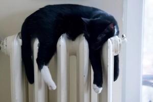Alytuje jau pradedamas šildymo sezonas.