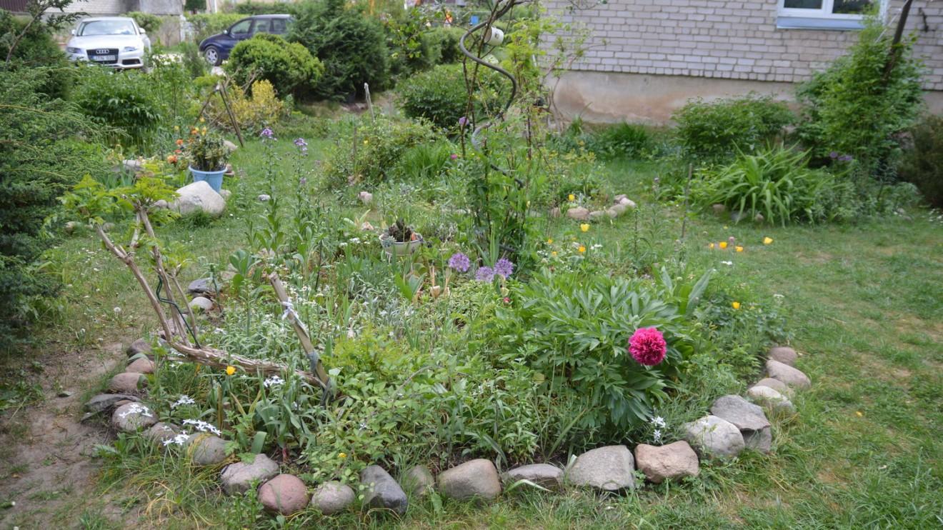 Ponios Stasės gėlių darželis.